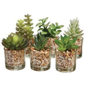 amazon succulents amazon com succulent artificial plants industrial