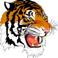 tiger clipart. free graphics, images and pictures of