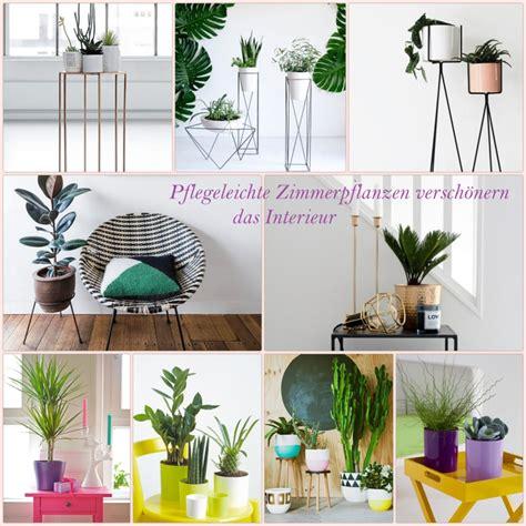 Schöne Pflegeleichte Zimmerpflanzen by Sch 246 Ne Zimmerpflanzen So Dekorieren Sie Ihr Zuhause Mit