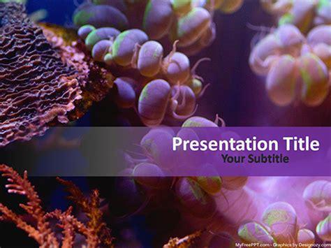 Free Sea Powerpoint Templates Myfreeppt Com Coral Reef Powerpoint Template Free