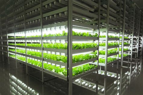 indoor garden technology this is the world s largest indoor farm