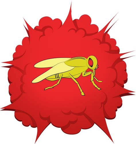 fruit fly barpro  number  fruit fly killer  america fruit fly barpro