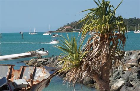 houseboats airlie beach 21 best fishing coomera houseboats images on pinterest