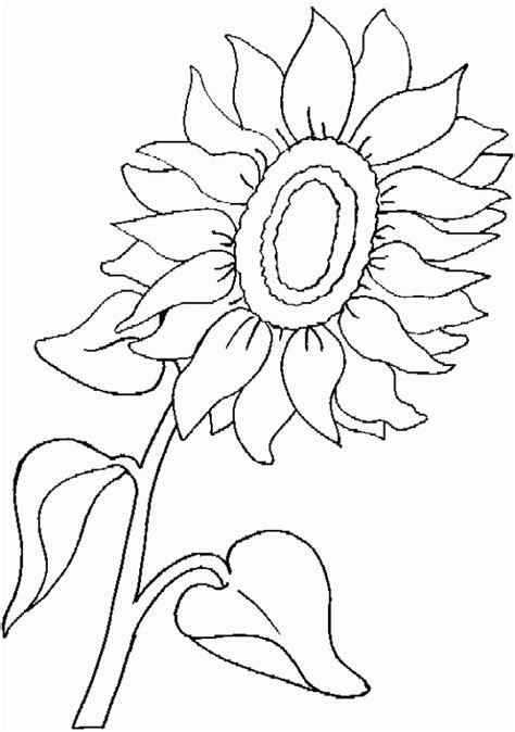 Nature Coloring Pages Coloringpagesabc Com Nature Colouring Pages