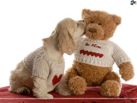 day teddy bears top 20 teddy wallpaper for happy teddy day 2015