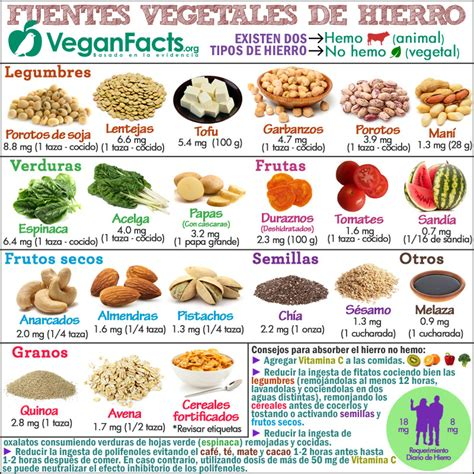 nutricion vegana dieta vegana veganismo fodmap alimentacion  vegetariana