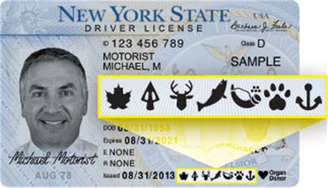 lifetime sporting licenses nys dept. of environmental