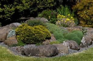 Rock Gardening Rock Garden Garden Ideas