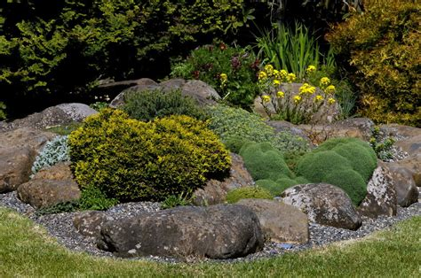 Rock Garden Garden Ideas Pinterest Rock Gardens
