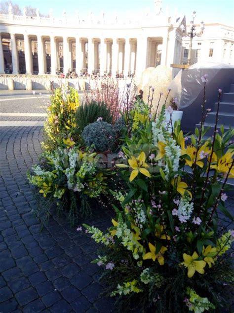 liguria fiori i fiori e le aromatiche della riviera ligure a san pietro