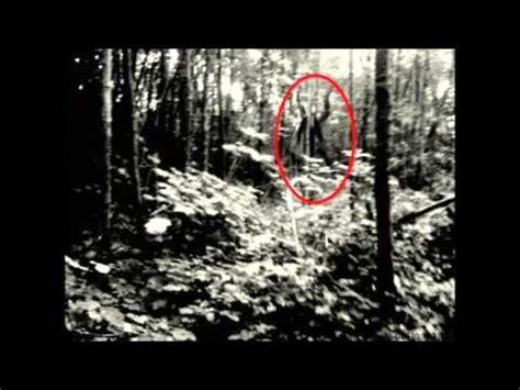 imagenes reales de slenderman slenderman el trailer mas xido y fotos reales by reuneix
