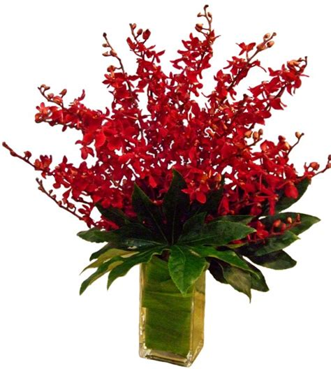 Orchids In A Vase Red Elephant Orchids Products Local Florist In San