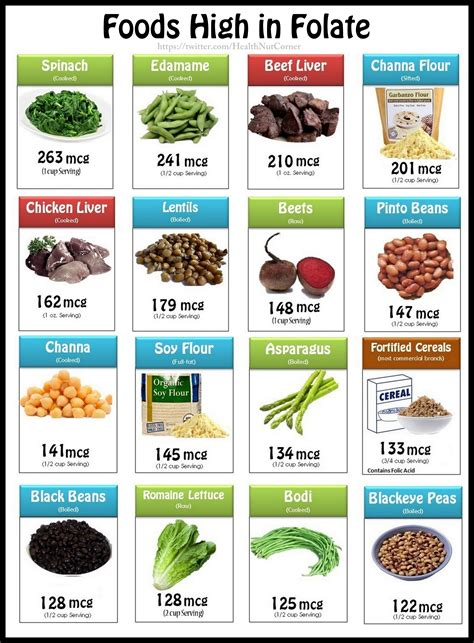 best sources of folic acid folate helps build blood cells eat foods rich in