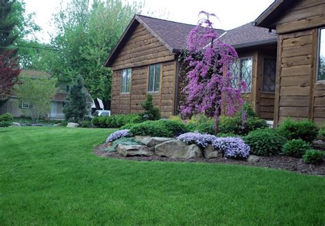 rustic landscaping ideas for a backyard front yard landscapes rustic landscape cleveland