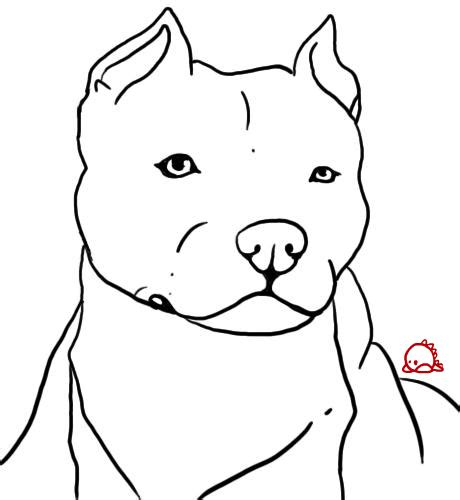 how to a puppy pitbull how to draw a pitbull puppy breeds picture