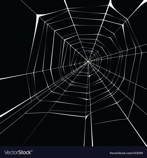 spider web background spider web background royalty free vector image