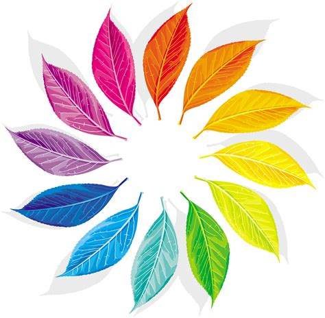 color wheel designs the amazing quot feather quot color wheel