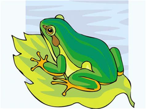 imagenes de ranas animadas navideñas ranas clip art gif gifs animados ranas 8131239