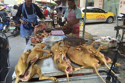 dogs in china china s yulin festival sees a butcher brandish a blood stained cleaver