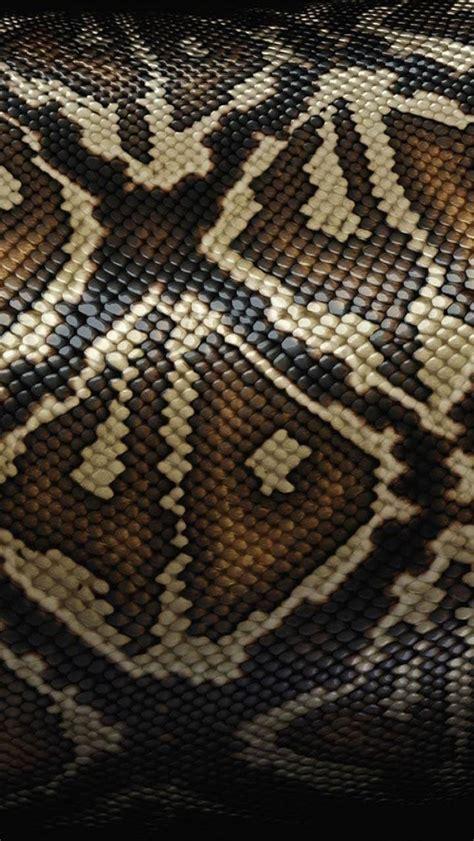 wallpapers snake skin wallpapers hd snake iphone 5 wallpaper skin iphone wallpaper retina