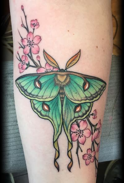 luna moth tattoo kurt brown 171 the gallery studio