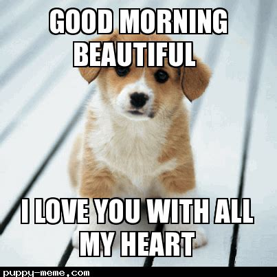 Good Morning Love Meme - good morning beautiful meme www pixshark com images