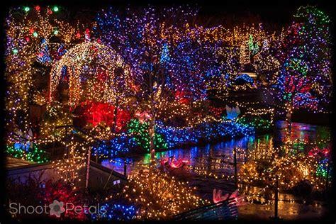 Vandusen Botanical Garden Lights Vandusen Botanical Gardens Throws A Dazzling Celebration Of Light