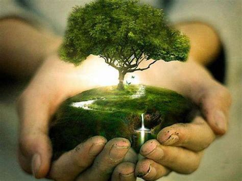plant a tree arbor day earth day for procrastinators