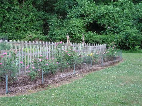 Fencing Ideas For Vegetable Gardens Garden Ideas Along Fence Home Garden Design