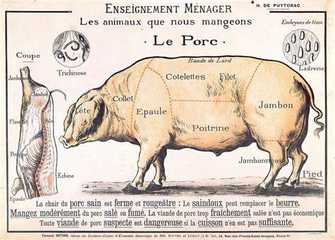 pork diagram poster cuts of pork drawing by school