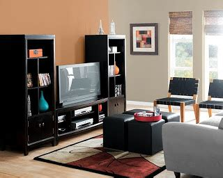 making your home sing: paint trends for 2011
