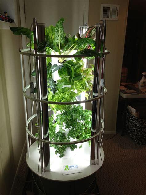 indoor tower garden  grow lights moves