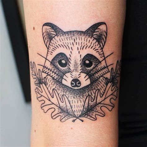 racoon tattoo best 25 raccoon ideas on raccoon