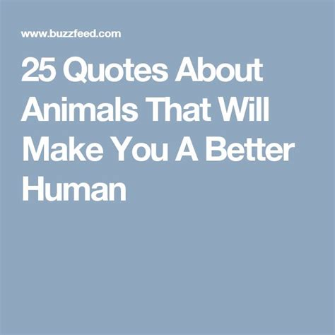 quotes about animals best 25 quotes about animals ideas on rescue