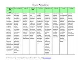 verb for resume best resume exle