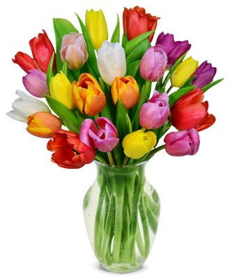 www housebeautiful customer service 60 best spring rainbow tulip bouquet 20 stems at from you flowers