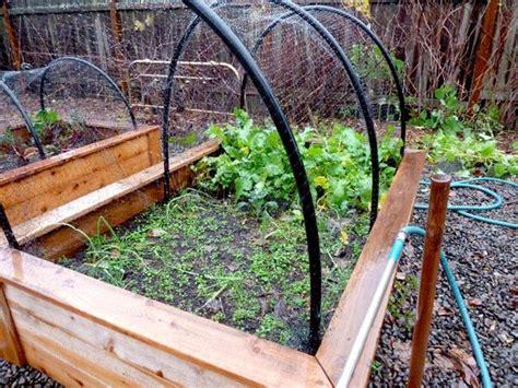 best 25 deer netting ideas on grow room