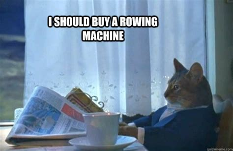 I Should Buy A Boat Meme - i should buy a rowing machine sophisticated cat quickmeme