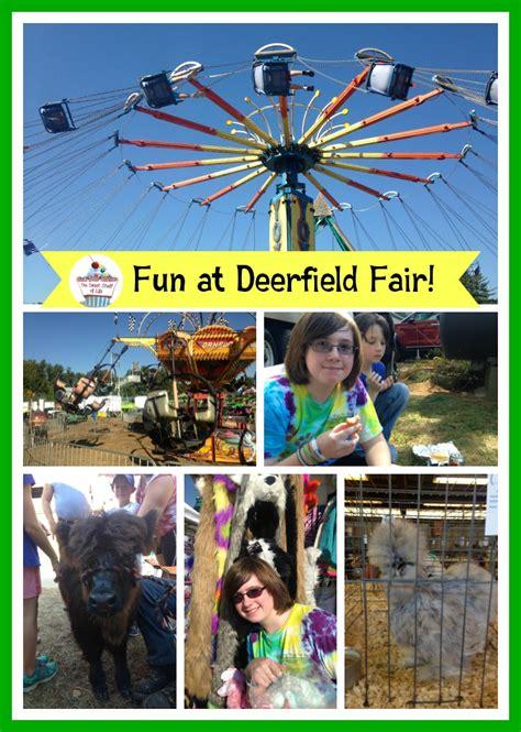 new years deerfield deerfield fair food and frisbee dogs