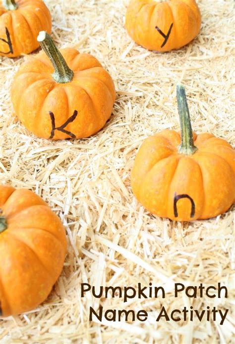 pumpkin names name activities pumpkin patches and name on