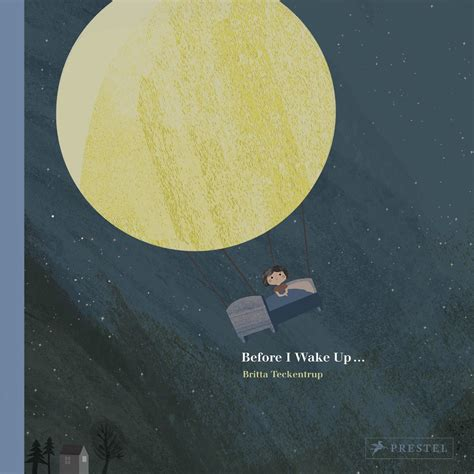 libro before i wake up before i wake up isbn 9783791372464 available from nationwide book distributors ltd nz
