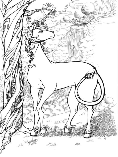 Unicorn Colouring Pages Coloring