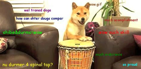 Shibe Meme Maker - doge gif gif on imgur