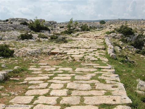 Ancient Ls by Ancient Rome Roads