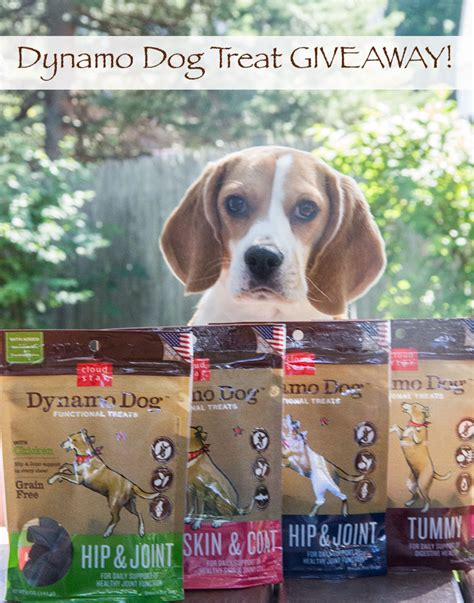 Dog Giveaway - calvin soars plus dynamo dog treat giveaway the scrumptious pumpkin