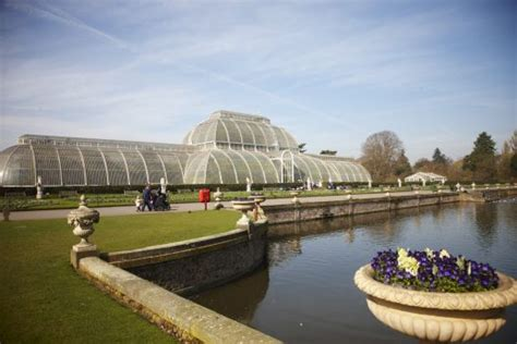 thames river cruise kew gardens london city sightseeing gardens royal parks regents park