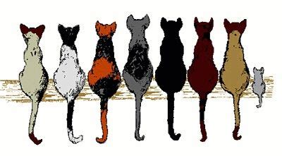 Cats Sitting On A Fence Wishing Iphone Semua Hp seven cats clipart