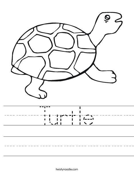 preschool coloring pages turtles turtle worksheet twisty noodle