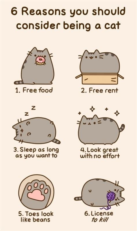 Pusheen The Cat Meme - 6 reasons you should consider being a cat weknowmemes