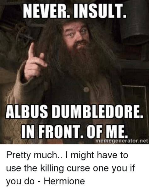Dumbledore Memes - never insult albus dumbledore in front of me
